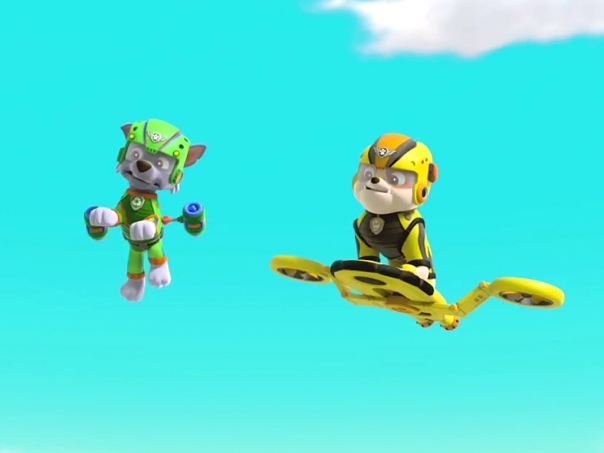 Paw Patrol TWO CHARACTERS