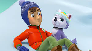 Paw Patrol  Character Everest Insight